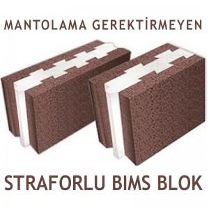straforlu-bims-blok-1